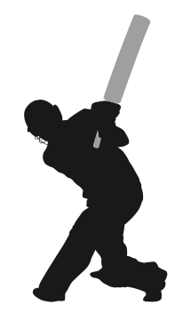 What Is Grafting In Cricket? Definition & Meaning On SportsLingo.com