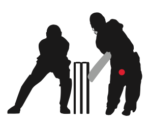 What Is A Popping Crease In Cricket? Definition & Meaning | SportsLingo