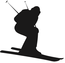Mogul Skiing Definition & Examples From SportsLingo.com